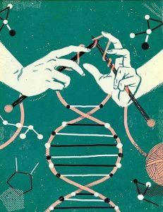 Занимательная генетика
